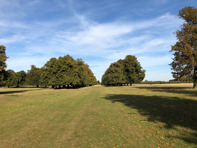 Hampton Court Park Park Walks